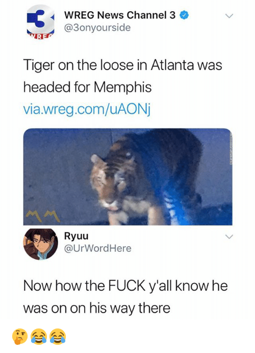 News, Fuck, and Tiger: WREG News Channel 3  @3onyourside  Tiger on the loose in Atlanta was  headed for Memphis  via.wreg.com/uAON  Ryuu  @UrWordHere  Now how the FUCK y'all know he  was on on his way there 🤔😂😂
