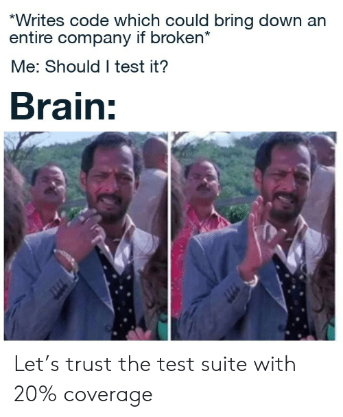 suite: *Writes code which could bring down an  entire company if broken*  Me: Should I test it?  Brain: Let's trust the test suite with 20% coverage