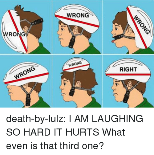 lulz: WRONG  WRONG  WRONG  RIGHT death-by-lulz:  I AM LAUGHING SO HARD IT HURTS What even is that third one?