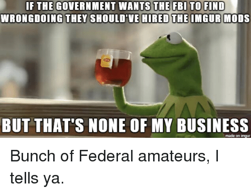 But Thats None Of My Business: WRONGDOING THEY SHOULD'VE  HIRED THE IMGUR MODS  BUT THAT'S NONE OF MY BUSINESS  made on imgur Bunch of Federal amateurs, I tells ya.