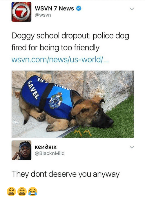 Wsvn: WSVN 7 News  @wsvn  Dogay school dropout police dog  fired for being too friendly  wsvn.com/news/us-world/  @BlacknMild  They dont deserve you anyway 😩😩😂