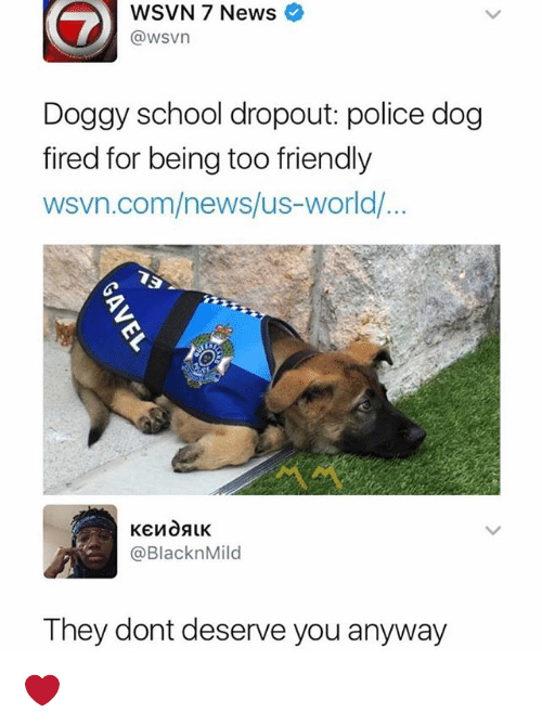 Memes, News, and Police: WSVN 7 News  @wsvn  Doggy school dropout: police dog  fired for being too friendly  wsvn.com/news/us-world/  @BlacknMild  They dont deserve you anyway ❤️
