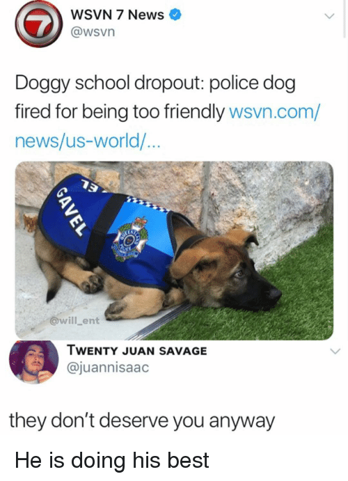 Wsvn: WSVN 7 News  @wsvn  Doggy school dropout: police dog  fired for being too friendly wsvn.com/  news/us-world/...  @will ent  TWENTY JUAN SAVAGE  @juannisaac  they don't deserve you anyway He is doing his best