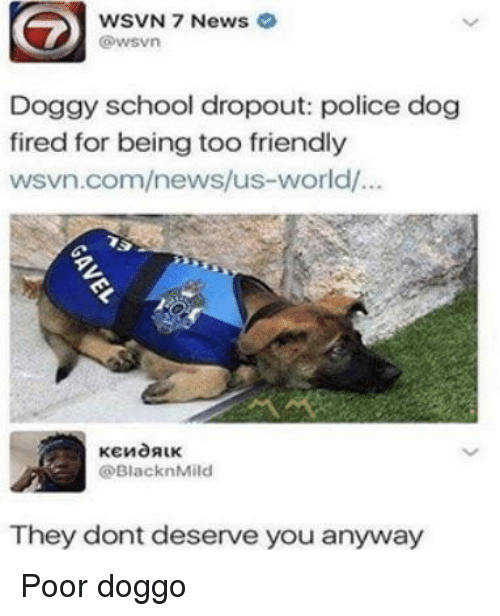 Wsvn: WSVN 7 News  @wsvn  Doggy school dropout: police dog  fired for being too friendly  wsvn.com/news/us-world/.  @BlacknMild  They dont deserve you anyway Poor doggo