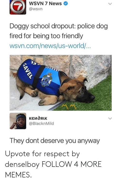 Wsvn: WSVN 7 News  @wsvn  Doggy school dropout: police dog  fired for being too friendly  wsvn.com/news/us-world...  13  кеидяік  @BlacknMild  They dont deserve you anyway  GAVEL Upvote for respect by denselboy FOLLOW 4 MORE MEMES.