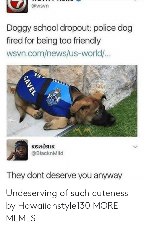 Wsvn: @wsvn  Doggy school dropout: police dog  fired for being too friendly  wsvn.com/news/us-world/  @BlacknMild  They dont deserve you anyway Undeserving of such cuteness by Hawaiianstyle130 MORE MEMES