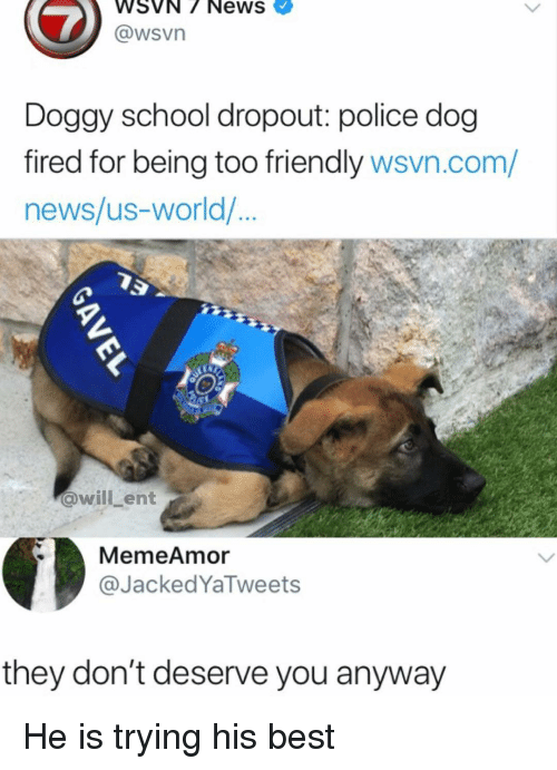 Wsvn: WSVN/ NewS  @wsVn  Doggy school dropout: police dog  fired for being too friendly wsvn.com/  news/us-world/  @willLent  MemeAmor  @JackedYaTweets  they don't deserve you anyway He is trying his best