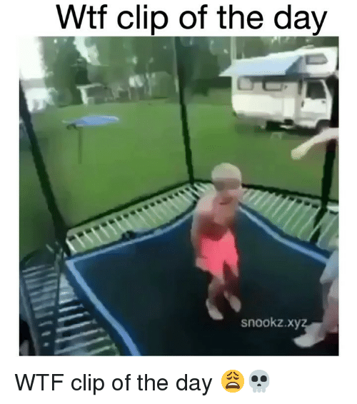 Funny, Wtf, and Day: Wtf clip of the day  snookz.x WTF clip of the day 😩💀