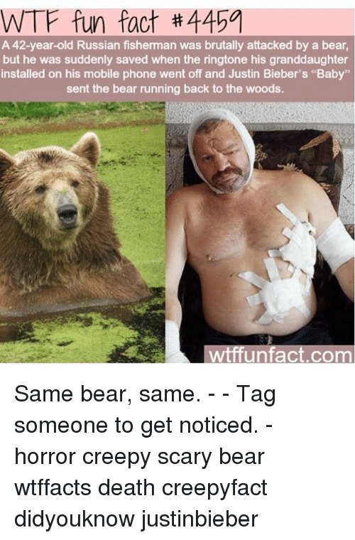 "wtf fun facts: WTF fun fact 4151  A 42-year-old Russian fisherman was brutally attacked by a bear,  but he was suddenly saved when the ringtone his granddaughter  installed on his mobile phone went off and Justin Bieber's ""Baby""  sent the bear running back to the woods.  wtffun fact com Same bear, same. - - Tag someone to get noticed. - horror creepy scary bear wtffacts death creepyfact didyouknow justinbieber"