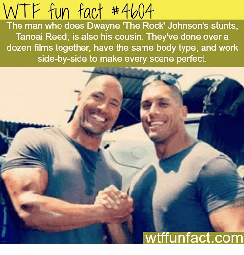 johnsons: WTF fun fact #4604  The man who does Dwayne The Rock' Johnson's stunts,  Tanoai Reed, is also his cousin. They've done over a  dozen films together, have the same body type, and work  side-by-side to make every scene perfect.  wtffunfact.com