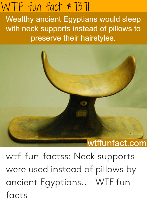wtf fun facts: WTF fun fact #7311  Wealthy ancient Egyptians would sleep  with neck supports instead of pillows to  preserve their hairstyles  wtffunfact.comm wtf-fun-factss:  Neck supports were used instead of pillows by ancient Egyptians.. - WTF fun facts