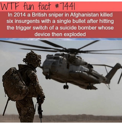 Memes, Wtf, and Afghanistan: WTF fun fact #7441  In 2014 a British sniper in Afghanistan killed  six insurgents with a single bullet after hitting  the trigger switch of a suicide bomber whose  device then exploded