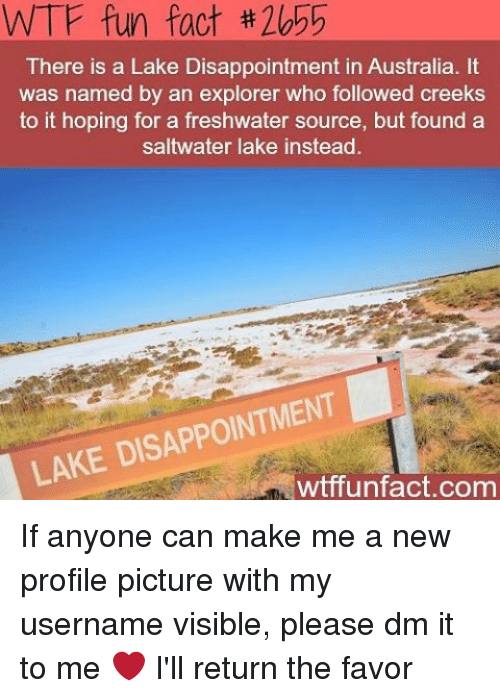 wtf fun facts: WTF fun fact th2b 5  There is a Lake Disappointment in Australia. It  was named by an explorer who followed creeks  to it hoping for a freshwater source, but found a  saltwater lake instead.  LAKE DI  wtffunfact.com If anyone can make me a new profile picture with my username visible, please dm it to me ❤️ I'll return the favor