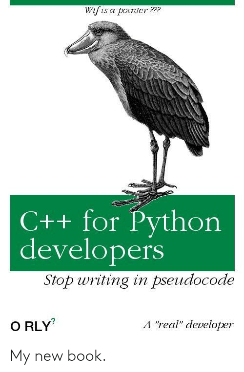 "Developers: Wtf is a pointcr???  C++ for Python  developers  Stop writing in pseudocode  A ""real"" developer  O RLY My new book."