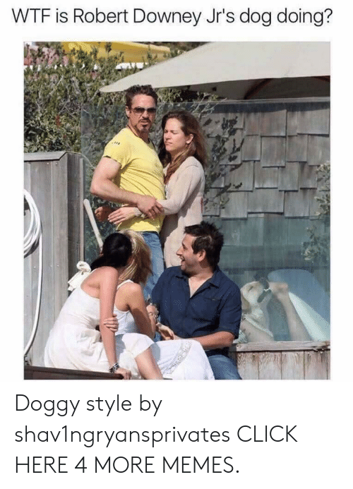 doggy style: WTF is Robert Downey Jr's dog doing? Doggy style by shav1ngryansprivates CLICK HERE 4 MORE MEMES.