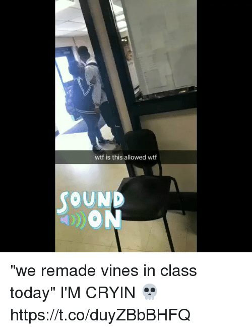 """Wtf, Today, and Vines: wtf is this allowed wtf  OUND """"we remade vines in class today"""" I'M CRYIN 💀 https://t.co/duyZBbBHFQ"""