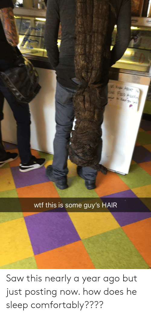 guys hair: wtf this is some guy's HAIR Saw this nearly a year ago but just posting now. how does he sleep comfortably????