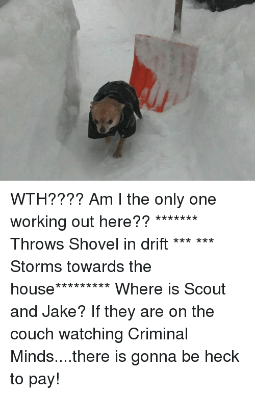 Criminations: WTH????  Am I the only one working out here??   ******* Throws Shovel in drift *** *** Storms towards the house*********  Where is Scout and Jake? If they are on the couch watching Criminal Minds....there is gonna be heck to pay!