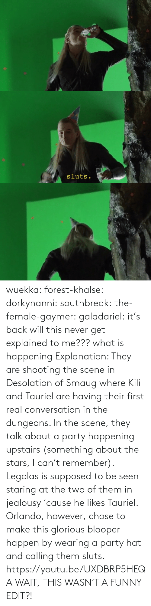 html: wuekka:  forest-khalse:   dorkynanni:  southbreak:   the-female-gaymer:   galadariel:  it's back   will this never get explained to me???    what is happening    Explanation:  They are shooting the scene in Desolation of Smaug where Kili and Tauriel are having their first real conversation in the dungeons.  In the scene, they talk about a party happening upstairs (something about the stars, I can't remember). Legolas is supposed to be seen staring at the two of them in jealousy 'cause he likes Tauriel.  Orlando, however, chose to make this glorious blooper happen by wearing a party hat and calling them sluts.    https://youtu.be/UXDBRP5HEQA    WAIT, THIS WASN'T A FUNNY EDIT?!
