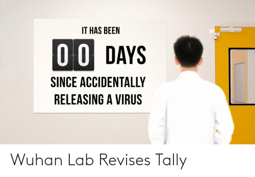 Lab: Wuhan Lab Revises Tally