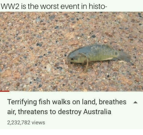 Threatens: WW2 is the worst event in histo-  Terrifying fish walks on land, breathes  air, threatens to destroy Australia  2,232,782 views