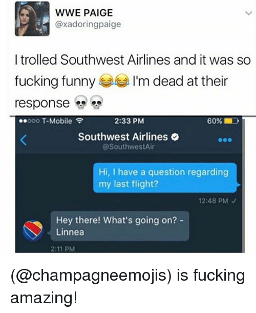 oooo: WWE PAIGE  @xadoringpaige  I trolled Southwest Airlines and it was so  fucking funny  I'm dead at their  response  2:33 PM  60%  ..oooo T-Mobile  Southwest Airlines  @Southwest Air  Hi, I have a question regarding  my last flight?  12:48 PM  Hey there! What's going on?  Linnea  2:11 PM (@champagneemojis) is fucking amazing!