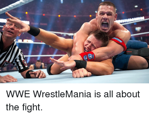 Wrestlemania: WWE WrestleMania is all about the fight.