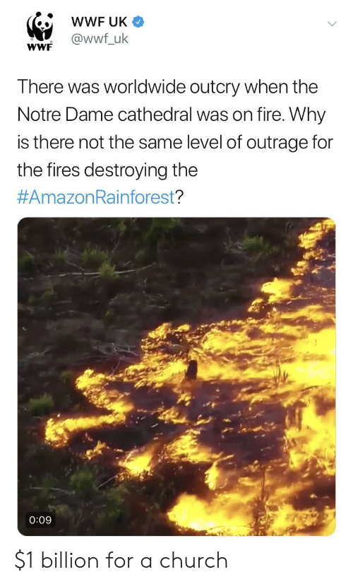 wwf: wWF UK  @wwf_uk  wWF  There was worldwide outcry when the  Notre Dame cathedral was on fire. Why  is there not the same level of outrage for  the fires destroying the  #AmazonRainforest?  0:09 $1 billion for a church
