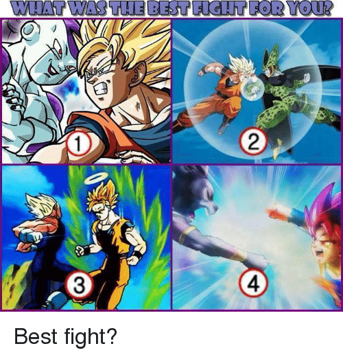 Memes, 🤖, and  Fightings: WWHAT WAS THE BEST PORYOUR  L 3 Best fight?