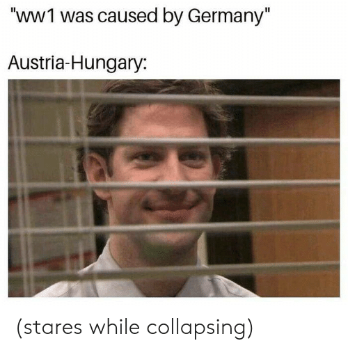 "collapsing: ""WWI was caused by Germany""  Austria-Hungary: (stares while collapsing)"