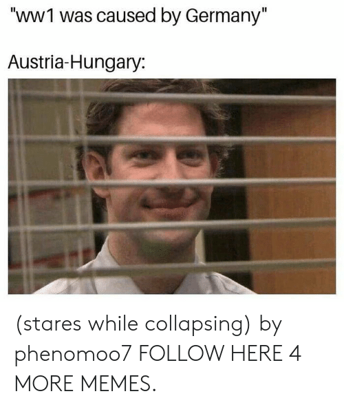 "collapsing: ""WWI was caused by Germany""  Austria-Hungary: (stares while collapsing) by phenomoo7 FOLLOW HERE 4 MORE MEMES."