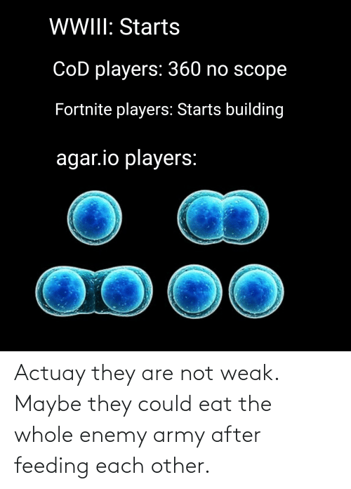 agar: WWII: Starts  CoD players: 360 no scope  Fortnite players: Starts building  agar.io players:  00 Actuay they are not weak. Maybe they could eat the whole enemy army after feeding each other.