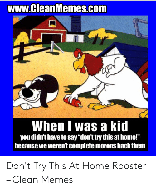 "Rooster Meme: www.CleanMemes.com  When I was a kid  you didn't have to say ""don't try this at home!""  because we weren't complete morons back them Don't Try This At Home Rooster – Clean Memes"