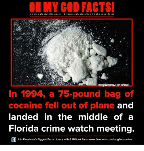 Crime, Memes, and Florida: www.om facts online.com I fb.com  facts on  oh my god facts  Innagesource Raw nterest  In 1994, a 75-pound bag of  cocaine fell out of plane and  landed in the middle of a  Florida crime watch meeting.  Join Facebook's Biggest Facts Library with 6 Million+ Fans- www.facebook.com/omgfactsonline