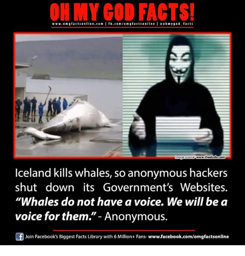 "memes: www.omg MY GOD FACTS!  OR facts online.com I fb.com/o m g facts www.thedodo com  mage source  Iceland kills whales, so anonymous hackers  shut down its Government's Websites.  ""Whales do not have a voice. We will be a  voice for them.  Anonymous.  Of Join Facebook's Biggest Facts Library with 6 Million+ Fans-www.facebook.com/omgfactsonline"