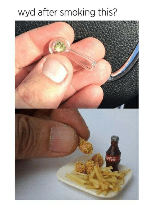 Smoking, Wyd, and Dank Memes: wyd after smoking this?