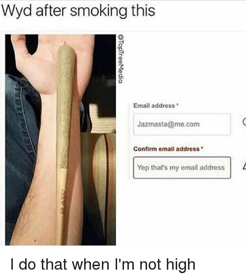 Memes, Smoking, and Wyd: Wyd after smoking this  Email address  Jazmasta me.com  Confirm email address  Yep that's my email address I do that when I'm not high