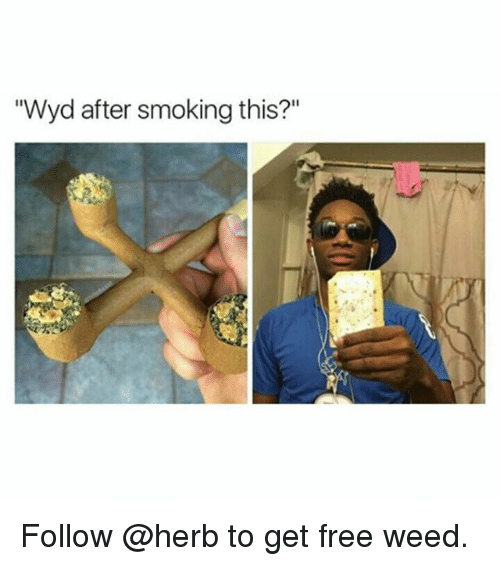 "Memes, Smoking, and Weed: ""Wyd after smoking this?"" Follow @herb to get free weed."