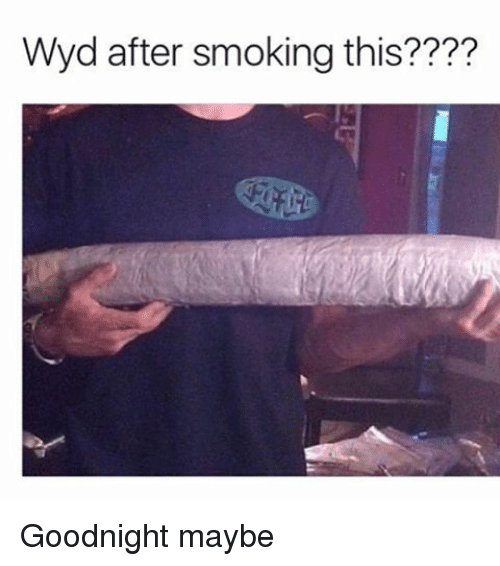 Memes, Wyd, and 🤖: Wyd after smoking this???? Goodnight maybe