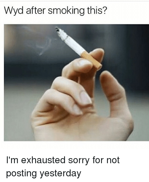 Memes, Smoking, and Sorry: Wyd after smoking this? I'm exhausted sorry for not posting yesterday