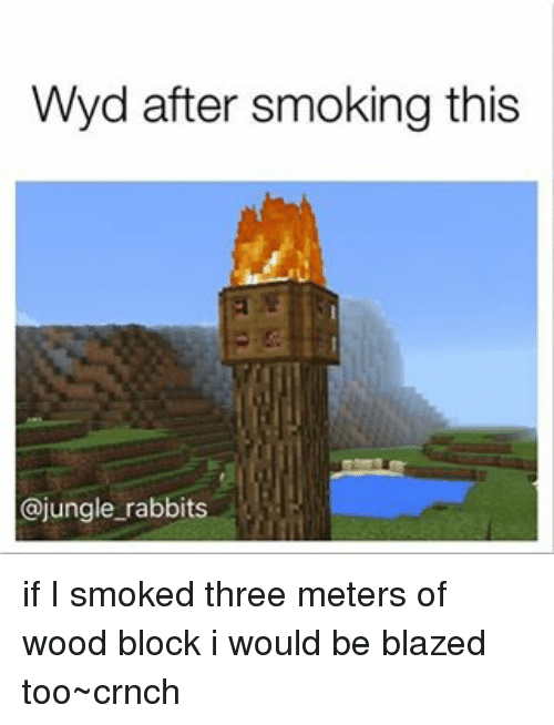 Memes, Smoking, and Wyd: Wyd after smoking this  @jungle rabbits if I smoked three meters of wood block i would be blazed too~crnch