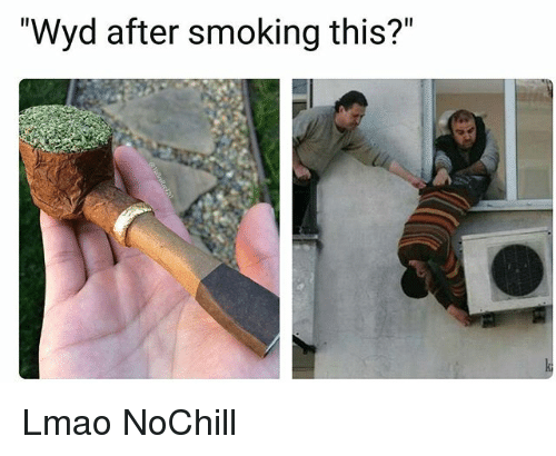 """Funny, Lmao, and Smoking: """"Wyd after smoking this?"""" Lmao NoChill"""