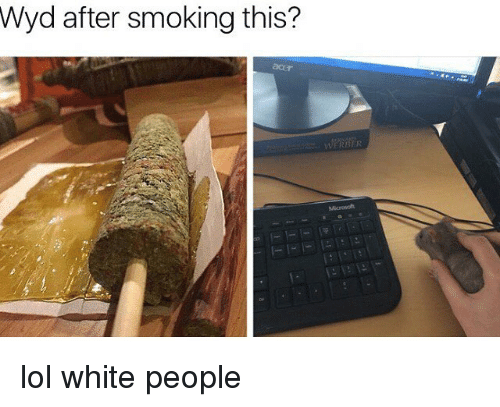 Memes, Wyd, and 🤖: Wyd after smoking this? lol white people