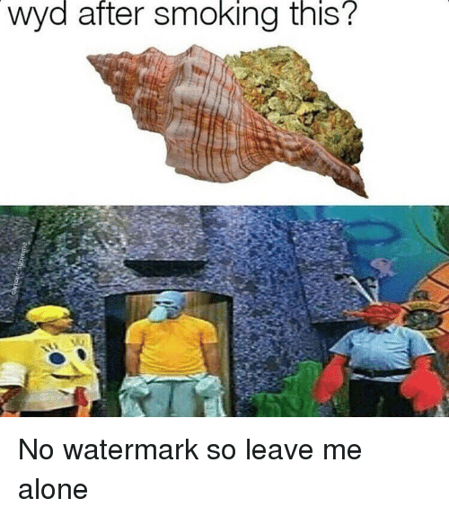 Memes, Wyd, and 🤖: wyd after Smoking this? No watermark so leave me alone