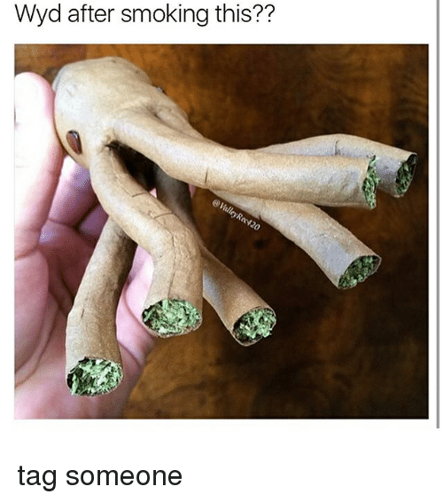Memes, Smoking, and Wyd: Wyd after smoking this?? tag someone