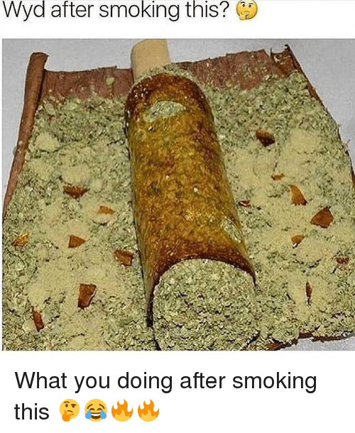 Memes, Smoking, and Wyd: Wyd  after  smoking  this? What you doing after smoking this 🤔😂🔥🔥