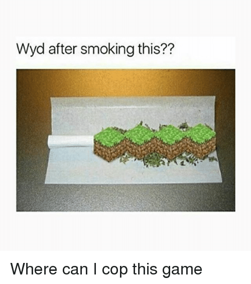 Memes, Smoking, and Wyd: Wyd after smoking this?? Where can I cop this game