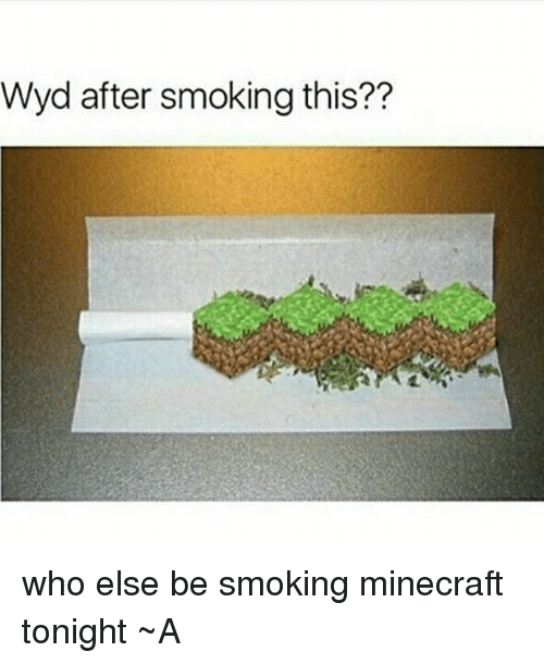 Memes, 🤖, and Minecrafte: Wyd after smoking this?? who else be smoking minecraft tonight ~A