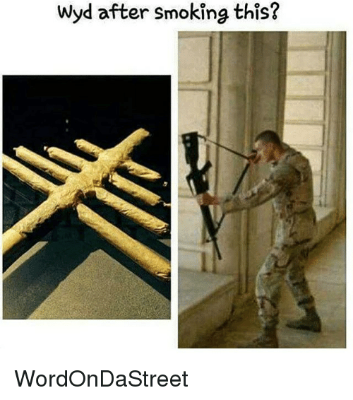 Memes, Smoking, and Wyd: wyd after smoking this? WordOnDaStreet