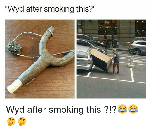 """Memes, Smoking, and Wyd: """"Wyd after smoking this?"""" Wyd after smoking this ?!?😂😂🤔🤔"""